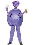 Child Roald Dahl Violet Beauregarde Costume special price n line only